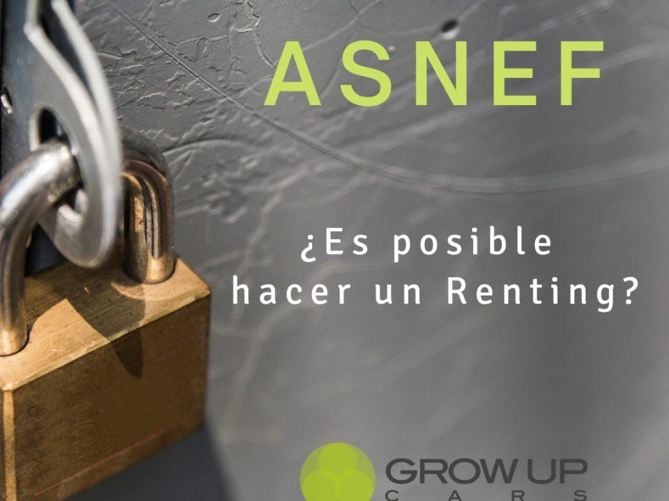 Renting Flexible Asnef